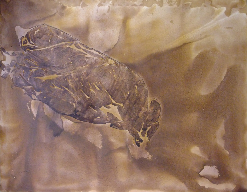 2007 Getüm  120 x 90 cm